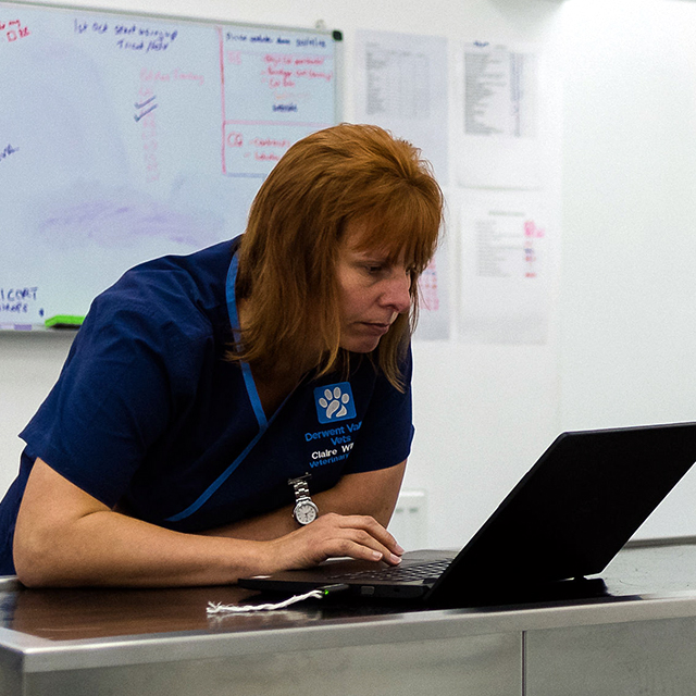Claire Wilson RVN, Practice Manager
